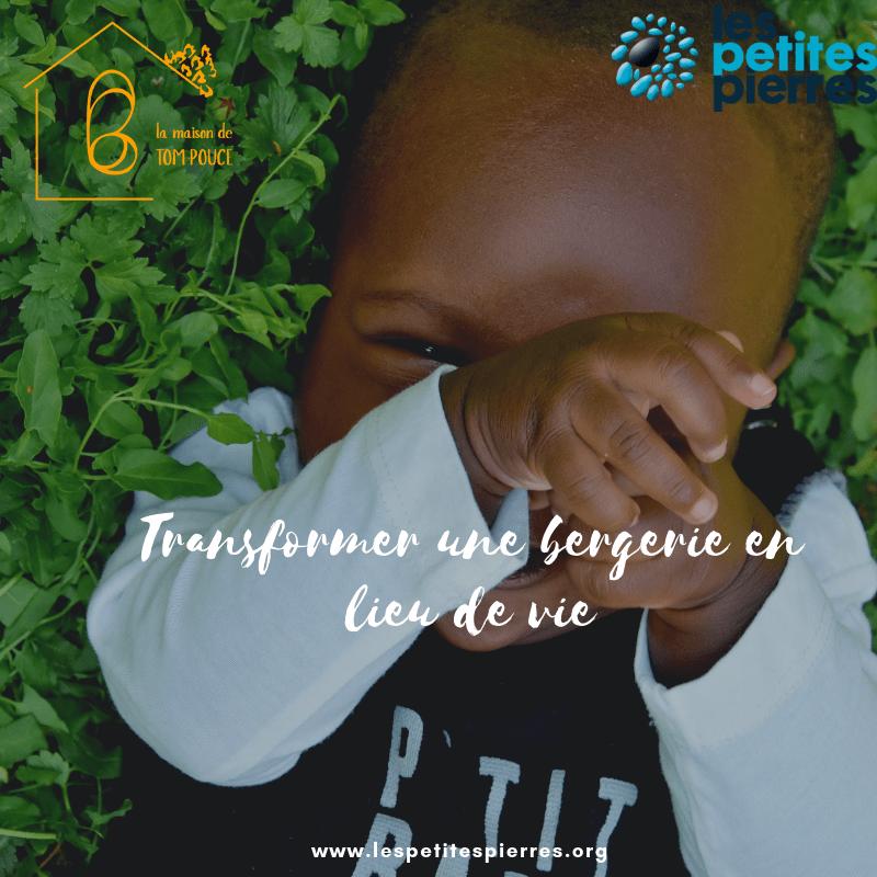 Read more about the article Transformer une bergerie en lieu de vie !